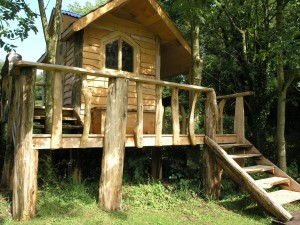chestnut and macracarpa treehouse and deck