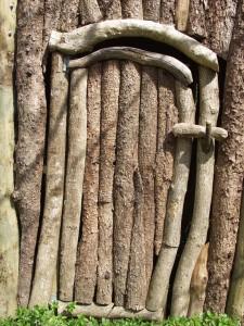 chestnut, softwood door