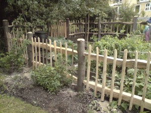 Chestnut gate with chestnut fencing