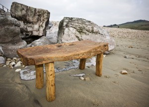 Chestnut coffee table