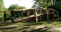 Organic timber bridge