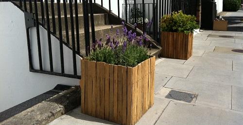 Oak lathe planter cover