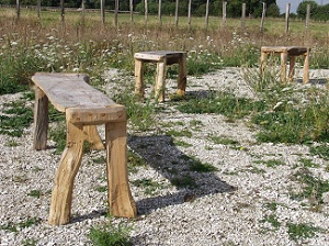 Rustic split chestnut bench