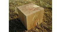 Spalted beech block