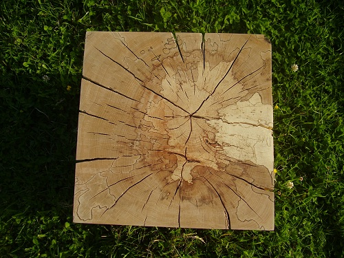 Spalted beech block cube table top