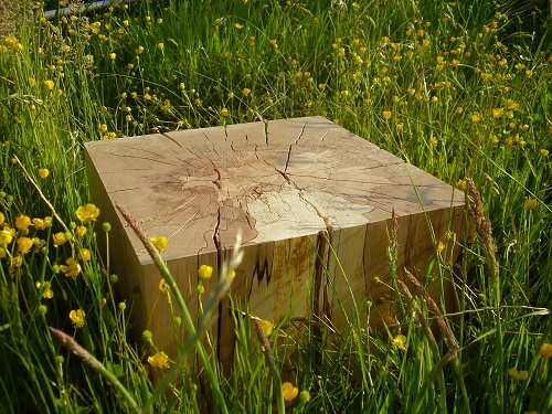 Spalted beech block table side grass