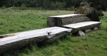 Ash viewing bench