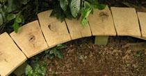 Curved oak garden seat