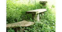 Meadow chestnut seats
