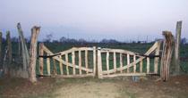 Curved wood entrance gate