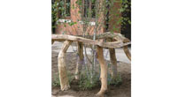 Organic oak tree guard