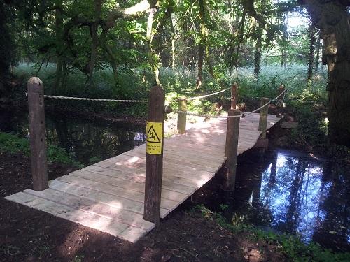 oak and telegraph pole bridge