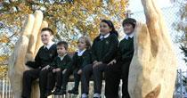 Giant Oak hand bench