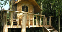 Chestnut treehouse