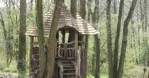 Organic chestnut treehouse