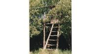 Chestnut treehouse & zip